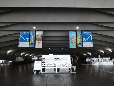 200605-ガーデンベアフォトスポット@大桟橋尾 (1)