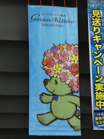 200605-ガーデンベアフォトスポット@大桟橋尾 (3)