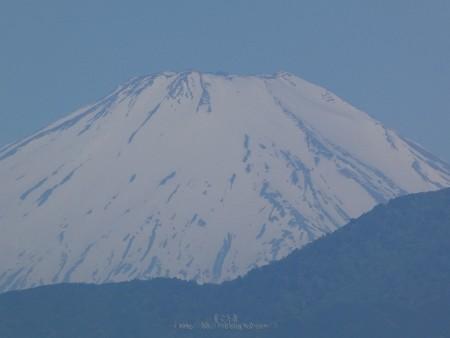 200514-富士山 (3)