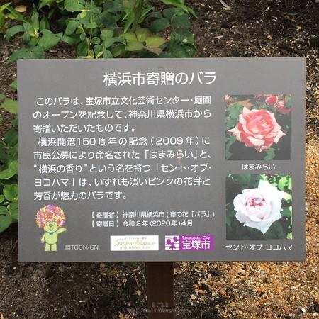 200601-宝塚市立文化芸術センター (1)