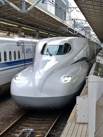 P_20200703_N700S のぞみ305@新横浜駅092348 (5)