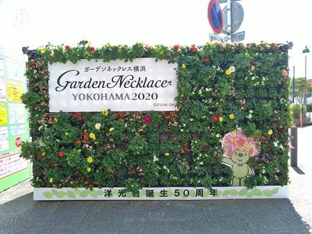 P_20200629_ガーデンベアフォトスポット@洋光台駅 (2)