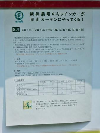 200808-里山ガーデン (3)