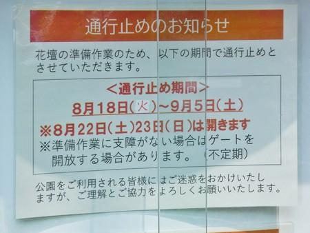 200808-里山ガーデン (4)