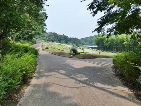 200808-里山ガーデン (29)