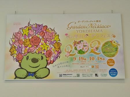 P_20200831_ガーデンベアフォトスポット@横浜市役所 (4)
