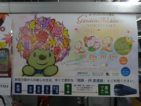 P_20200911_20年秋ガーデンネックレス横浜 中吊り(相鉄) (1)