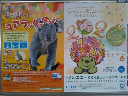 P_20200914_20年秋ガーデンネックレス横浜 ポスター(京急) (2)