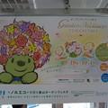Photos: P_20200914_20年秋ガーデンネックレス横浜 中吊り(京急)(2)