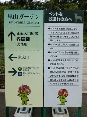 200919-里山ガーデン外周 (11)