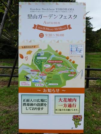 200919-里山ガーデン外周 (20)