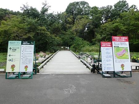 200919-里山ガーデン外周 (10)