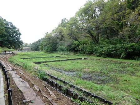 200919-里山ガーデン外周 (6)