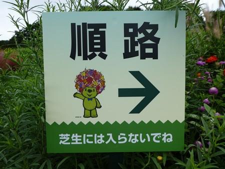 200919-里山ガーデン 大花壇 (8)