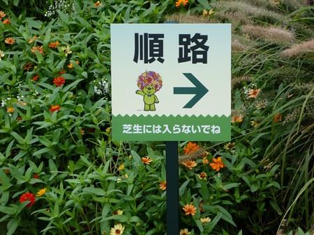 200919-里山ガーデン 大花壇 (14)