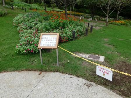 200919-里山ガーデン 大花壇 (19)