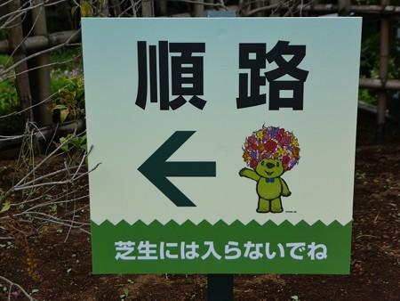 200919-里山ガーデン 大花壇 (12)
