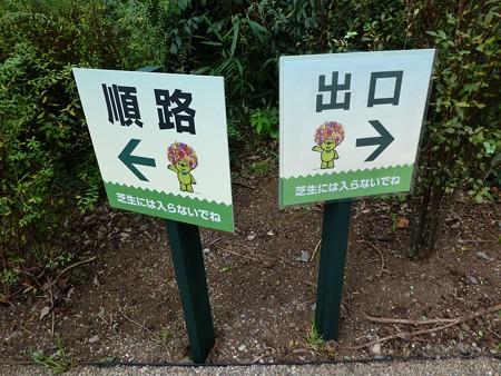200919-里山ガーデン 大花壇 (57)