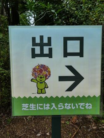200919-里山ガーデン 大花壇 (58)