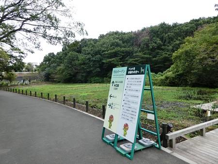 200919-里山ガーデン外周 (8)