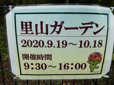 200919-里山ガーデン外周 (16)