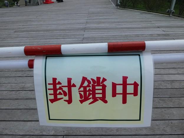 Photos: 200919-里山ガーデン 大花壇 (75)