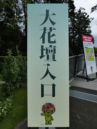 200919-里山ガーデン 大花壇 (2)