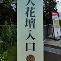Photos: 200919-里山ガーデン 大花壇 (2)