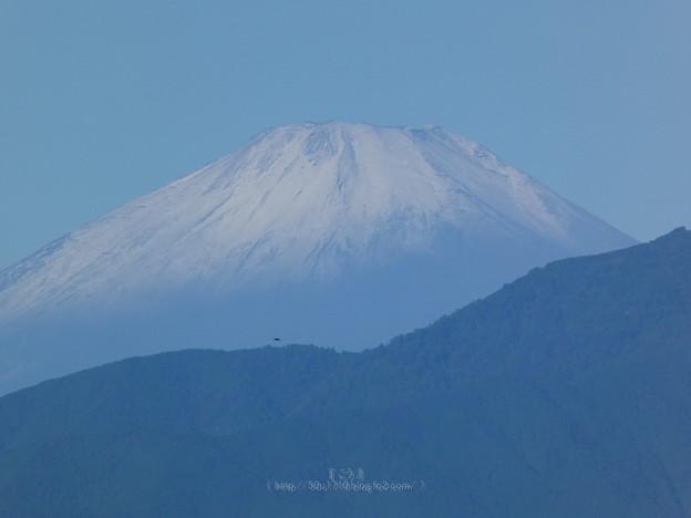 200928-富士山(朝) (2)