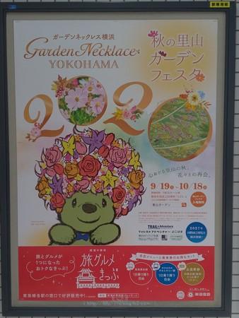 P_20200928_20年秋ガーデンネックレス横浜 ポスター(東急)