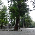 Photos: 201017-外宮 (25)