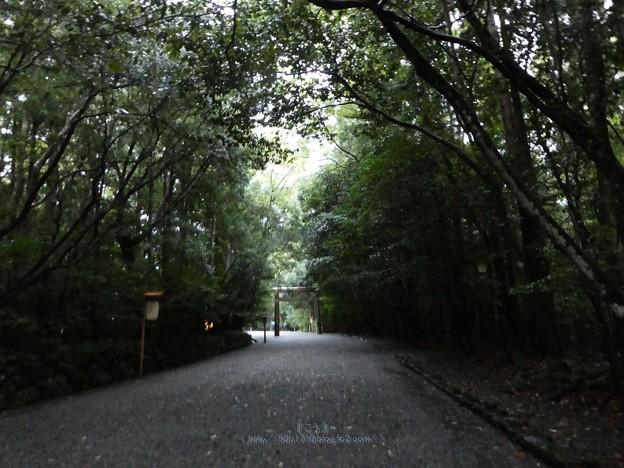 201017-内宮 (21)