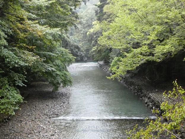 201017-内宮 (38)