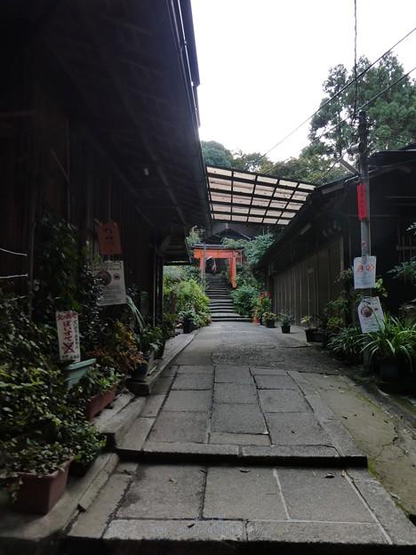 201018-伏見稲荷 (76)