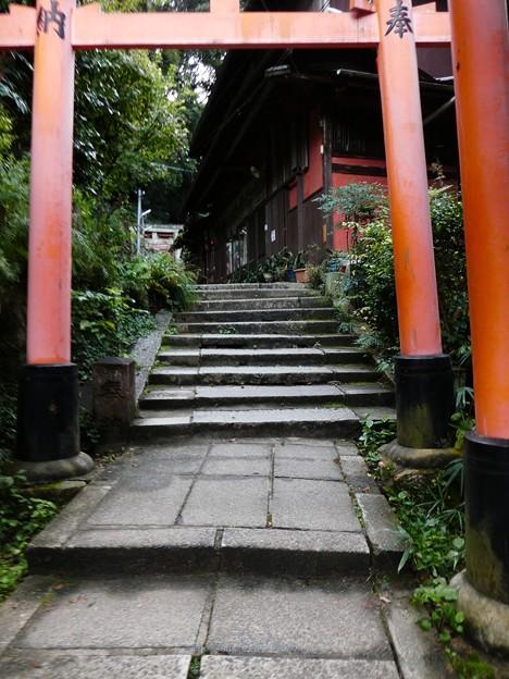 201018-伏見稲荷 (77)