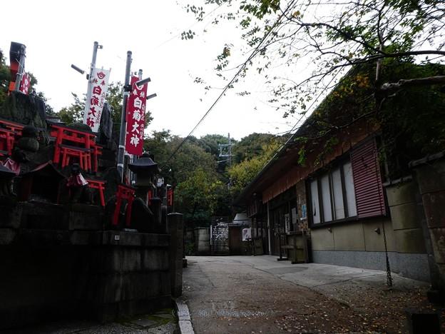 201018-伏見稲荷 (109)