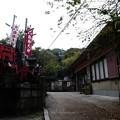 Photos: 201018-伏見稲荷 (109)