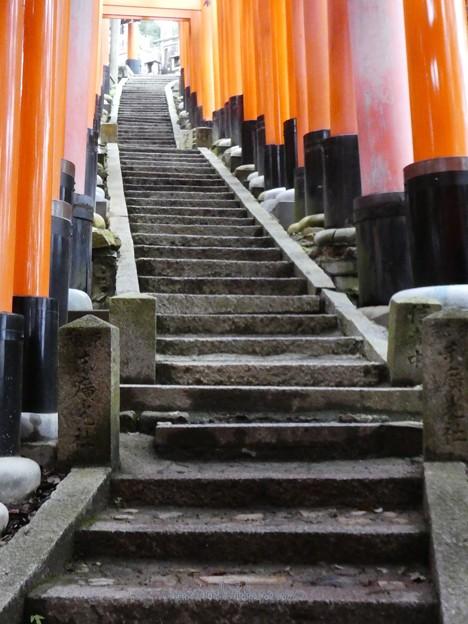 201018-伏見稲荷 (124)