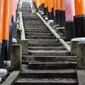 Photos: 201018-伏見稲荷 (124)