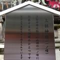 Photos: 201018-伏見稲荷 (138)