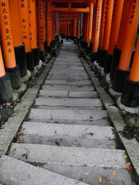 201018-伏見稲荷 (151)