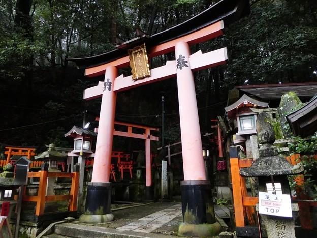 201018-伏見稲荷 (165)