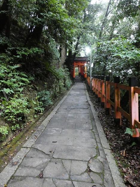 201018-伏見稲荷 (172)