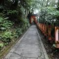 Photos: 201018-伏見稲荷 (172)