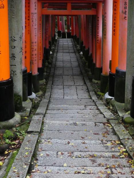 201018-伏見稲荷 (143)