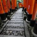 Photos: 201018-伏見稲荷 (176)