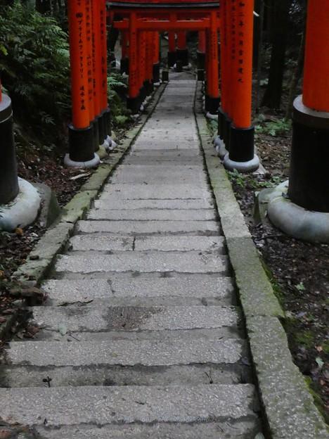 Photos: 201018-伏見稲荷 (153)