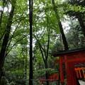 Photos: 201018-伏見稲荷 (158)