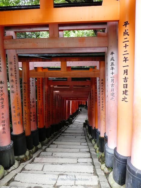 201018-伏見稲荷 (189)