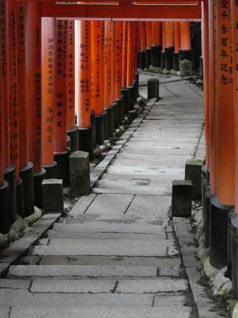 201018-伏見稲荷 (190)